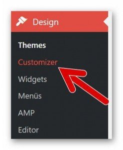 WP Design Customizer