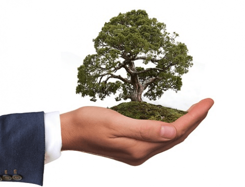 Environmentally friendly printing: 8 tips for more environmental protection