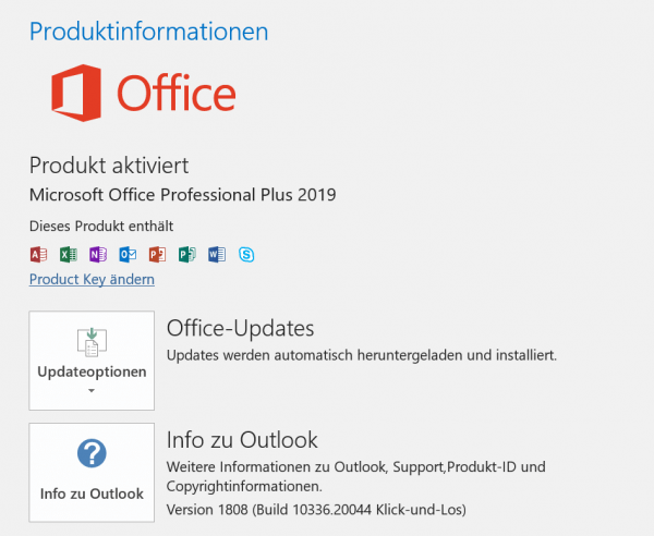Office 2019 Produktinfo