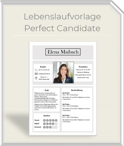 Lebenslaufvorlage - Perfect Candidate