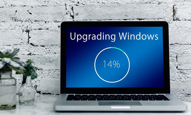 What to do if the Windows license expires?
